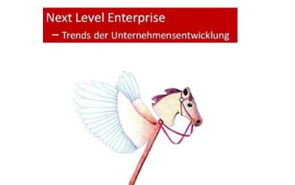 Next Level Enterprise